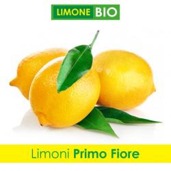 Limoni Bio PRIMO FIORE - Confezione da 5 Kg
