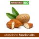 Mandorla FASCIONELLO Bio - non sgusciata da 500 g